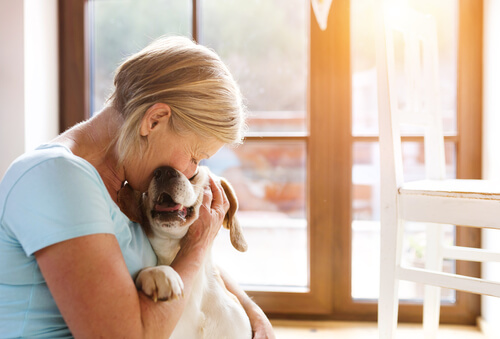 What To Do With Your Parent's Pet