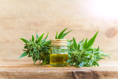 CBD, A Cannabis Extract, May Help Patients Relieve Stress And Anxiety.