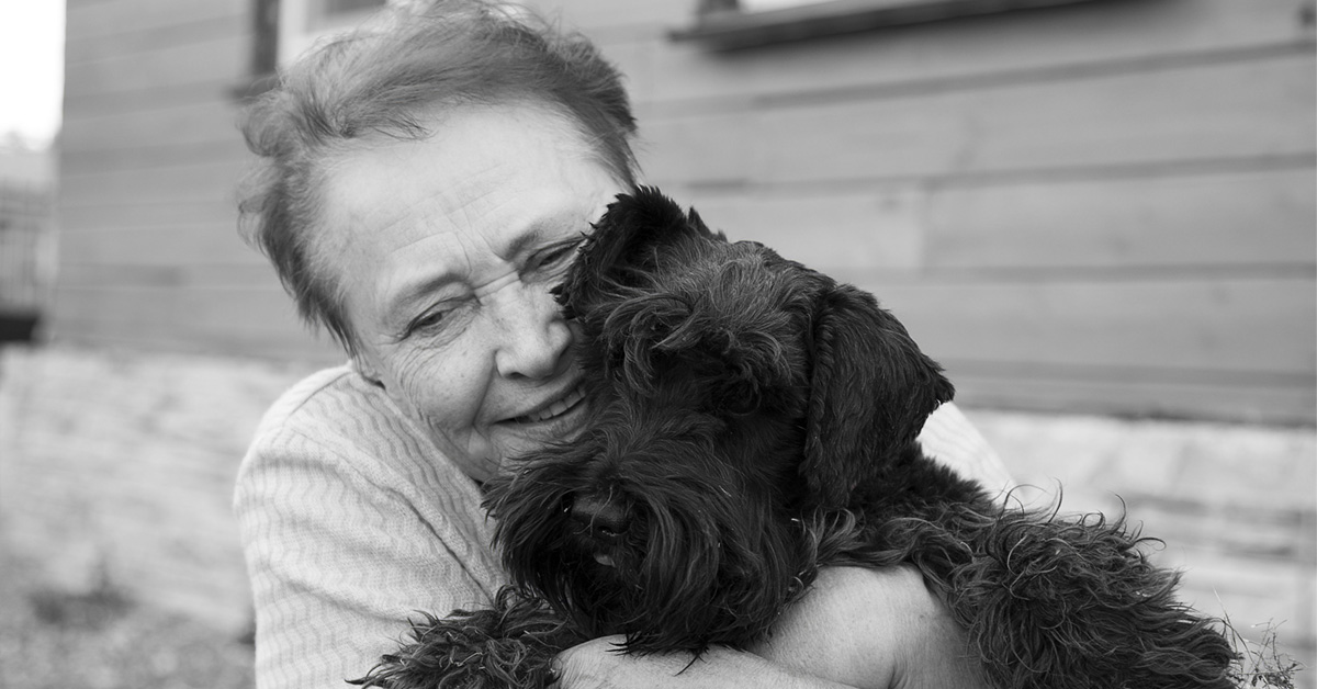 Therapy Dogs In Hospice Care